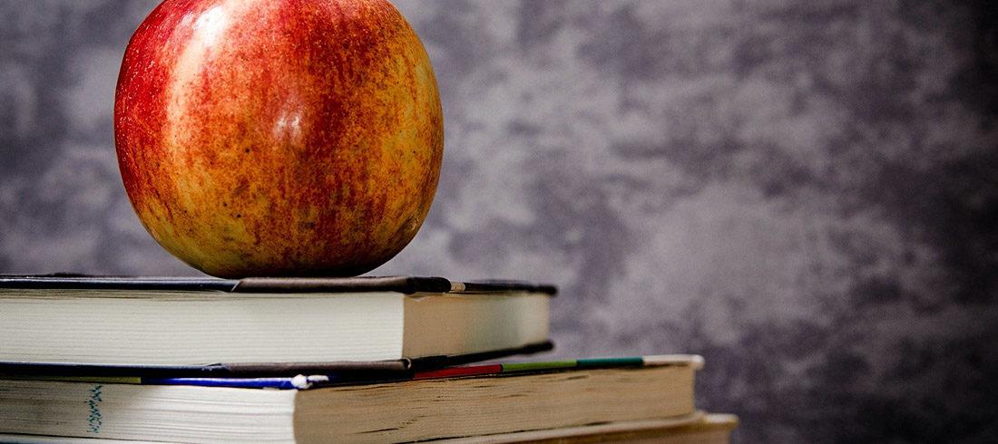 Ovoce do škol